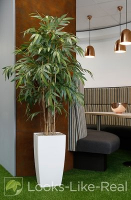 Bamboo 1800/900mm Artificial Office Plant