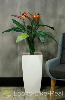 Bird of Paradise 1200/850mm Artificial Office Plant